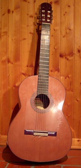 Martin Diaz,   2001 Flamenco guitar with Schertler mic.